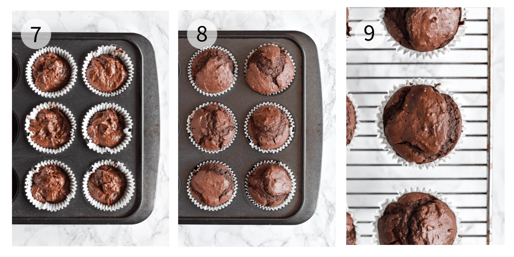 process photographs showing chocolate cupcakes being baked